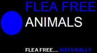 Flea Free Animals